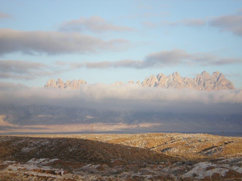 Tempestade do inverno do deserto imagem de stock royalty free