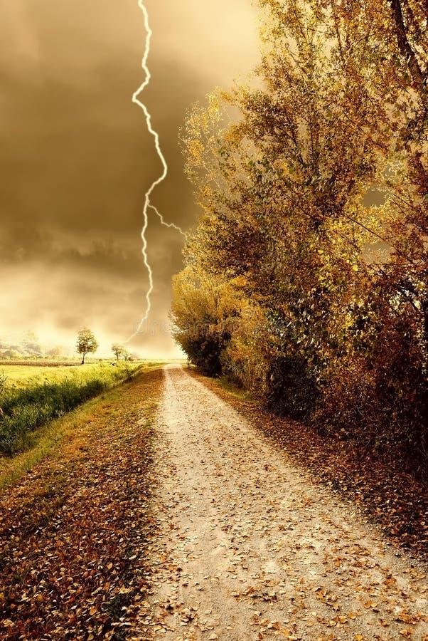 Tempestade do outono no parque imagem de stock royalty free