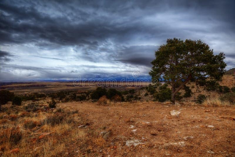 Tempestade do trovão de Grand Canyon foto de stock royalty free