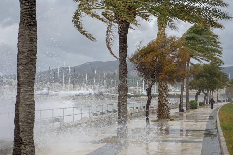 tempestade na baía fotografia de stock