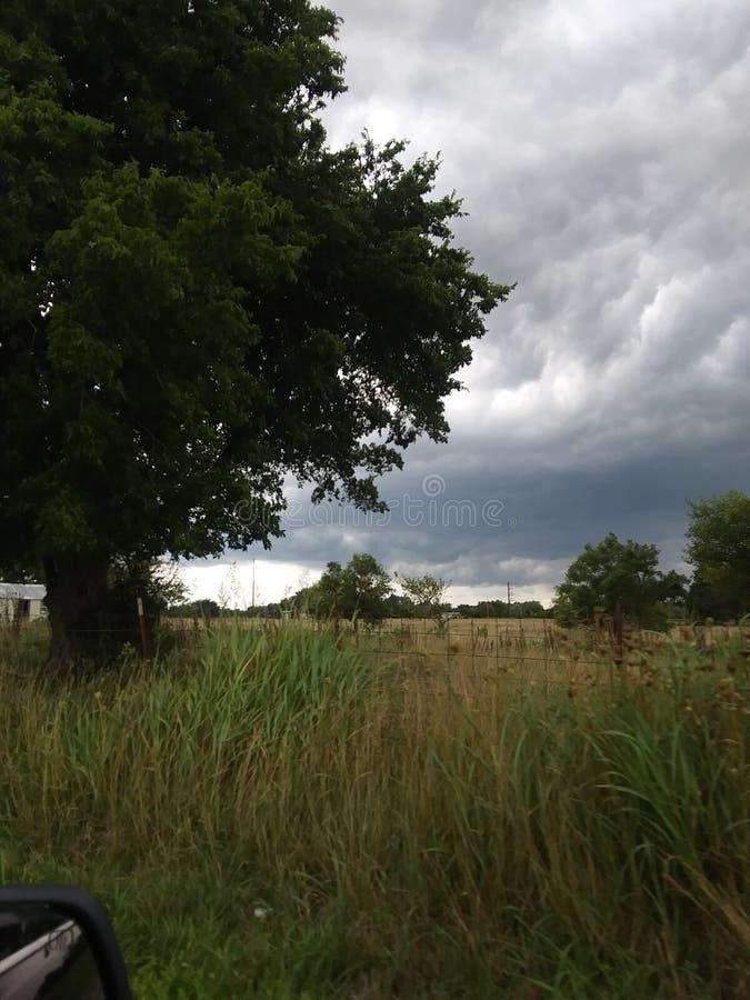 Tempestades do país e campos sunkissed imagens de stock