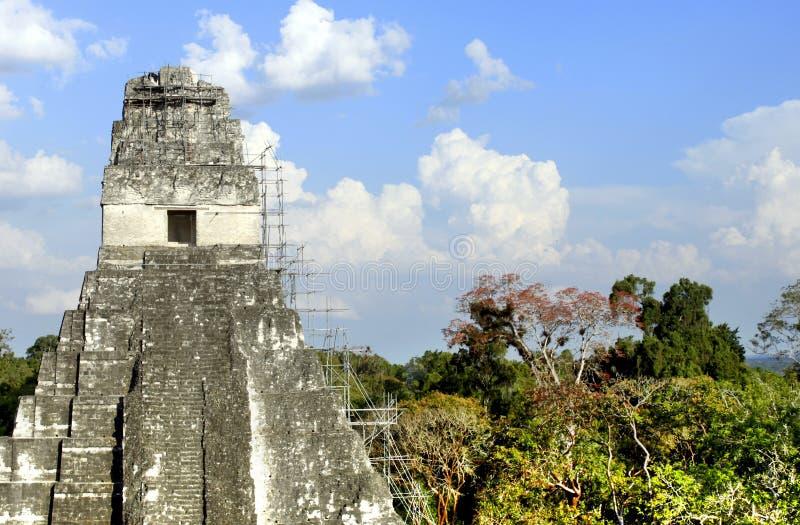Tempiale 1 di Tikal immagine stock