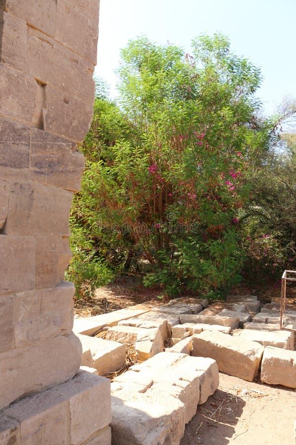 Tempiale di Philae, Egitto fotografia stock libera da diritti