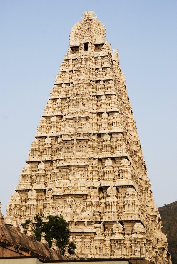 Tempiale di Shiva, Thiruvannamalai, Tamil Nadu, India immagini stock