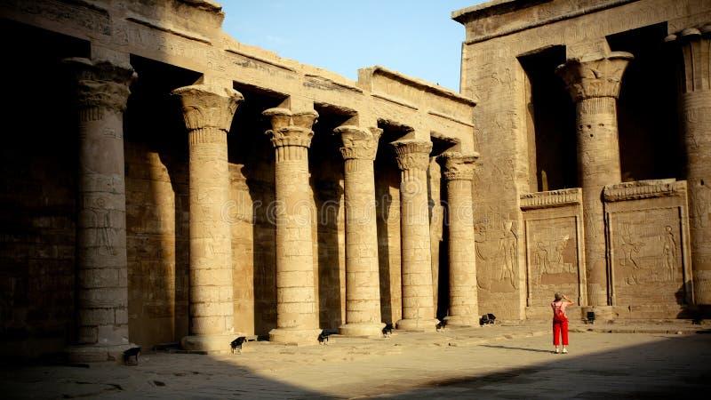 Tempiale nell'Egitto fotografie stock libere da diritti