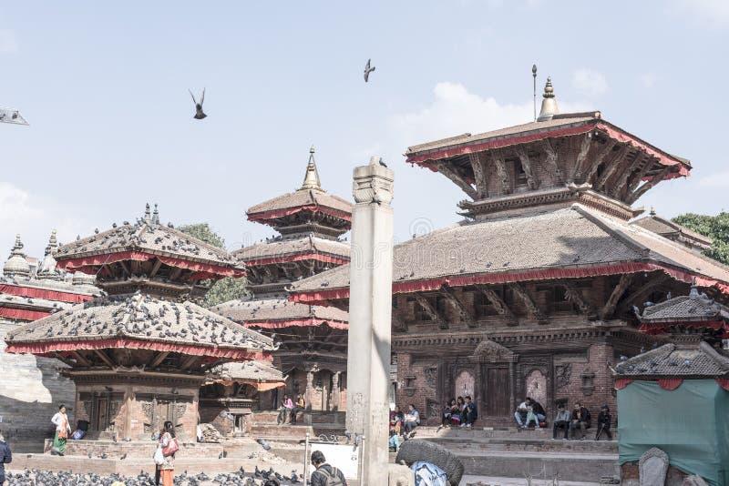 Tempie con i piccioni nel Nepal fotografia stock libera da diritti