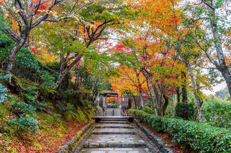 Tempio in autunno, Kyoto di Adashinonenbutsuji nel Giappone fotografia stock