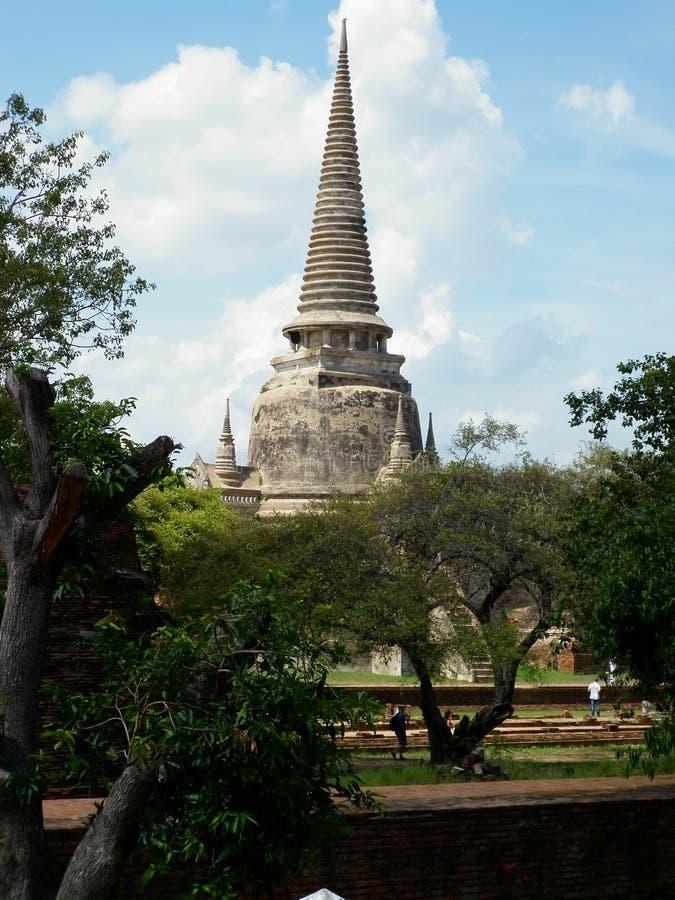 Tempio - Ayutthaya immagine stock