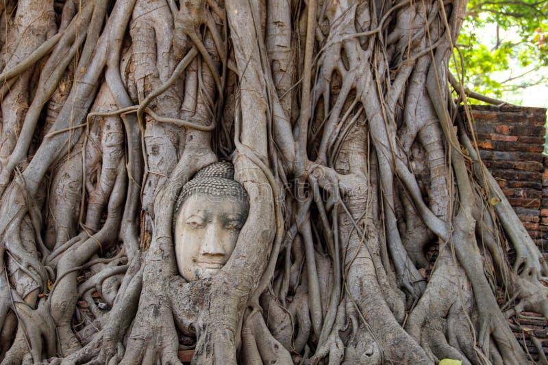 Tempio buddista in Ayatthuya, Bangkok Tailandia fotografia stock