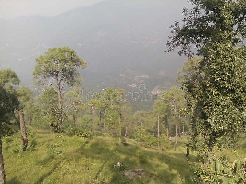 Tempio dell'India immagini stock libere da diritti