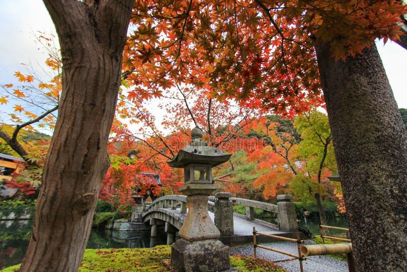Tempio di Eikando (Zenrin-ji) in autunno fotografia stock