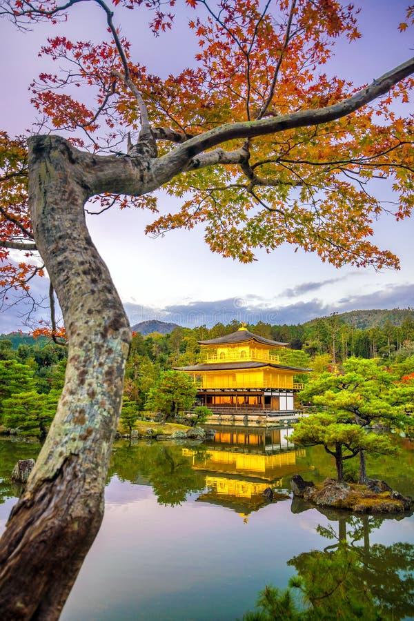 Tempio di Kinkakuji a Kyoto, Giappone in autunno immagini stock