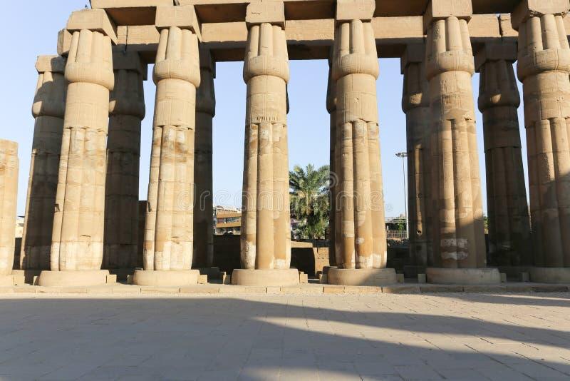 Tempio di Luxor - l'Egitto immagine stock libera da diritti