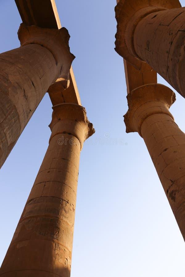 Tempio di Luxor - l'Egitto fotografie stock