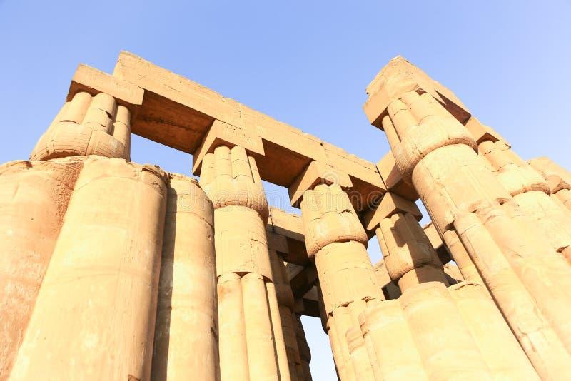 Tempio di Luxor - l'Egitto fotografia stock libera da diritti