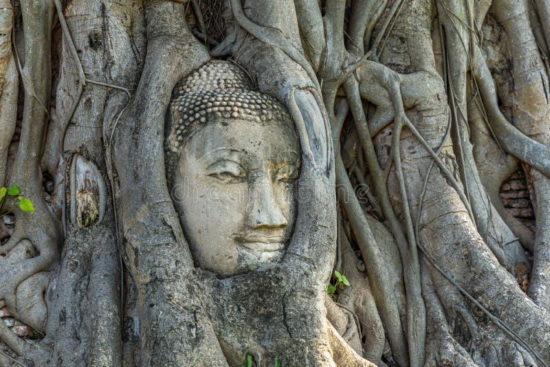 Tempio di Mahathat nel recinto del parco storico di Sukhothai immagine stock libera da diritti