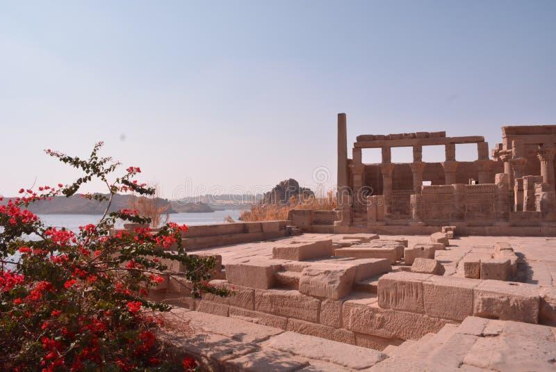 Tempio di Philae immagine stock libera da diritti