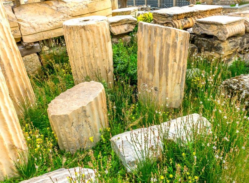Tempio di rovine Augustus Rome Yellow Wildflowers Acropolis Atene G fotografia stock