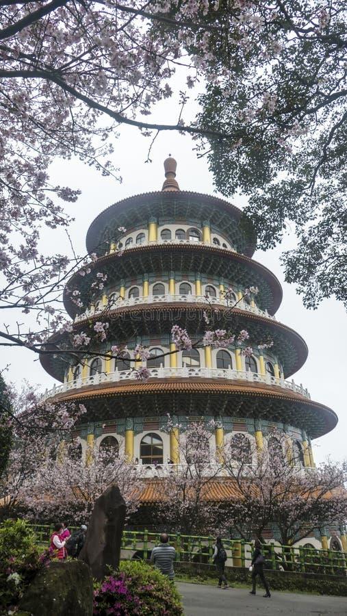 Tempio di Tien-yuan con il fiore di ciliegia in Taipei immagine stock