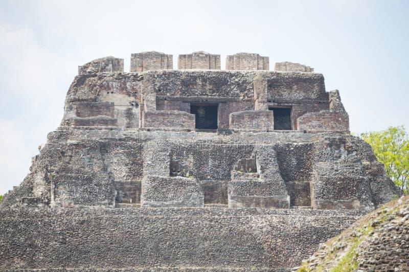Tempio maya immagine stock libera da diritti