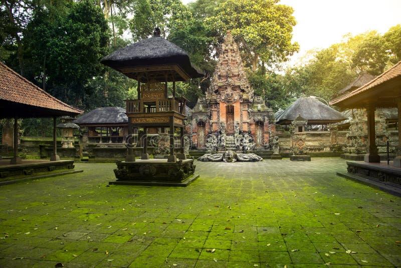 Tempio in scimmia sacra Forest Sanctuary fotografia stock