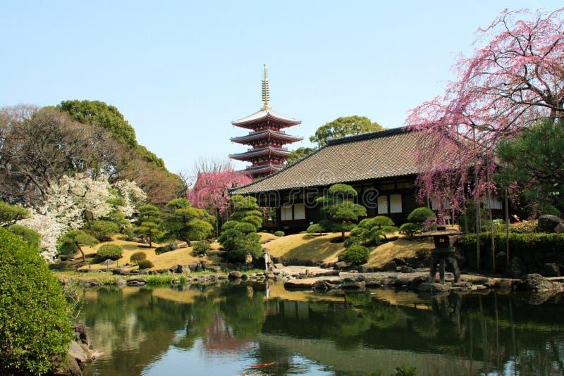 Tempio Tokyo di Denpoin immagini stock libere da diritti