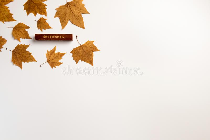 Template for fall festival, poster, web, invitation, flyer, Happy Thanksgiving royalty free stock photo