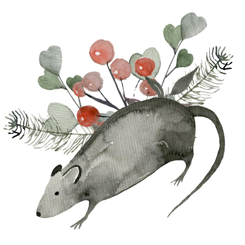 Template for postcards from plants and rat royalty free illustration