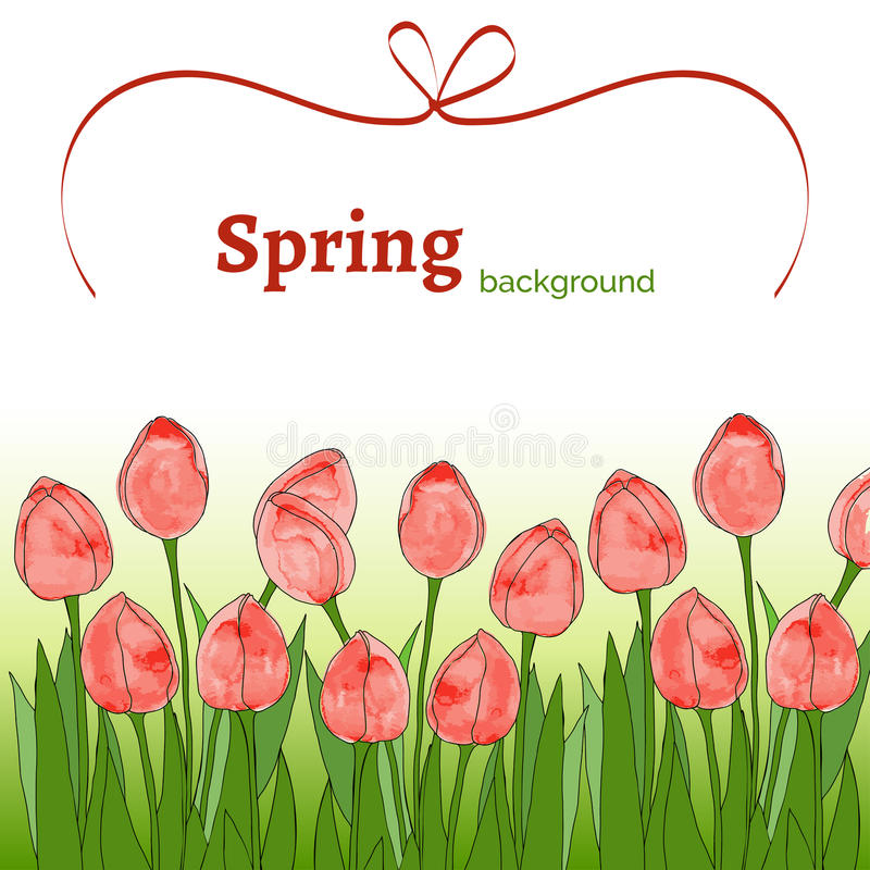 Template with spring flowers (tulips) with watercolor texture on a white background. Spring positive background with red tulips and red ribbon vector illustration