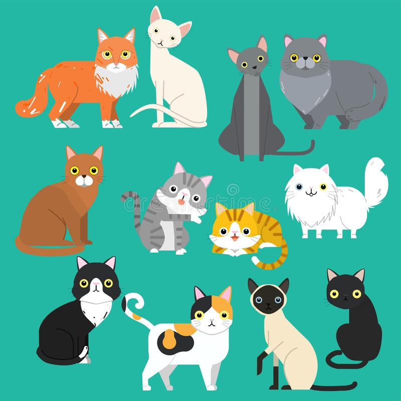 Funny cartoon cats characters different breeds cute pet animal set royalty free illustration