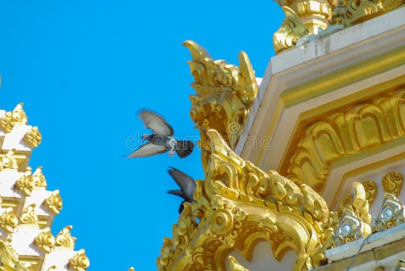 Temple3 库存照片