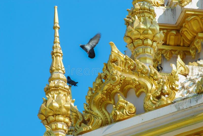 Temple2 стоковые фотографии rf