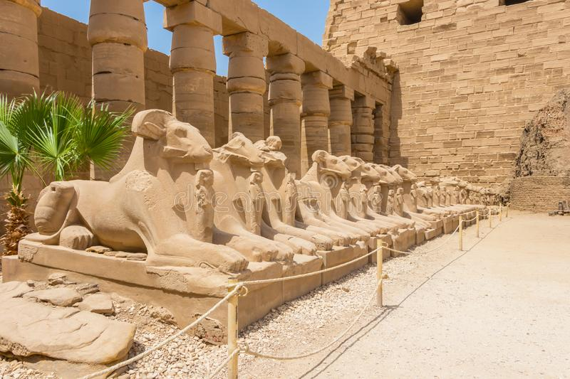 Avenue of Ram-headed Criosphinxes at the Temple of Amun, Karnak, Luxor, Egypt. The Temple of Amun is the largest religious building in the world and honors not royalty free stock image