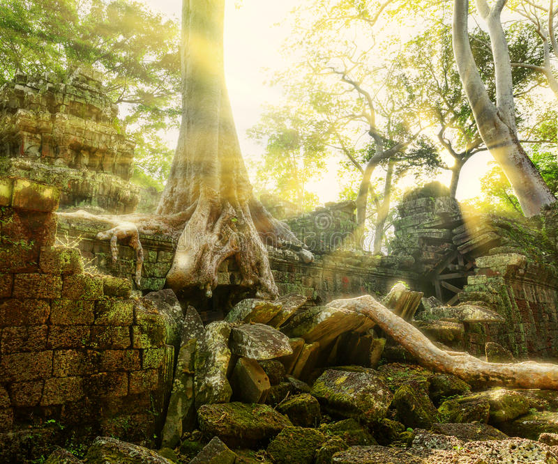 Download Temple In Angkor Thom, Cambodia Stock Photo - Image: 42426629