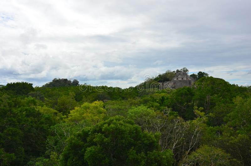 Temple at Calakmul, Campeche, Mexico royalty free stock photo