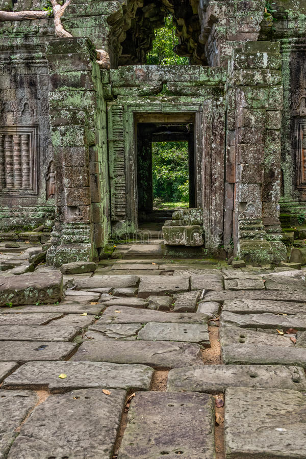 Temple in the Cambodian Jungle. The Angkor complex is extensive and inspiring stock images