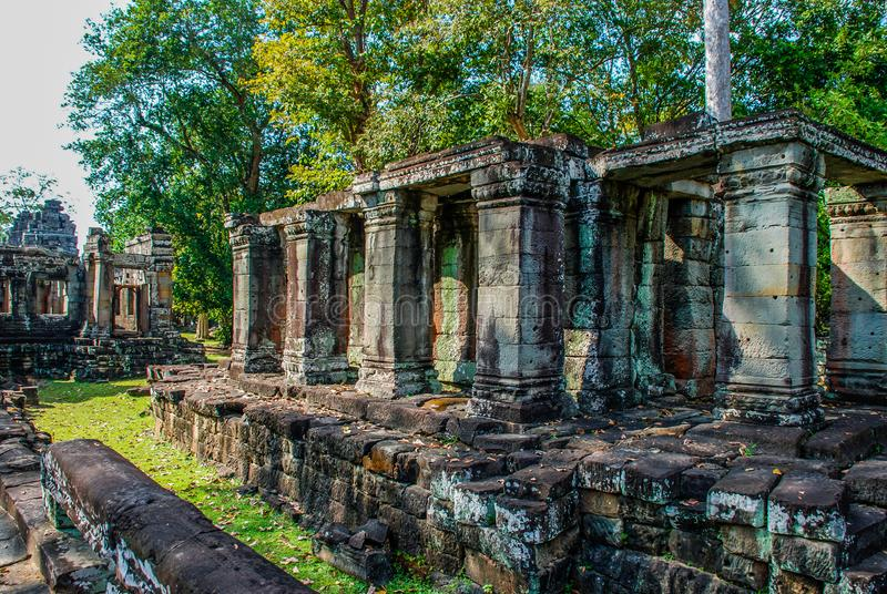 Temple columns and green trees among the ruins of Angkor Wat stock photo