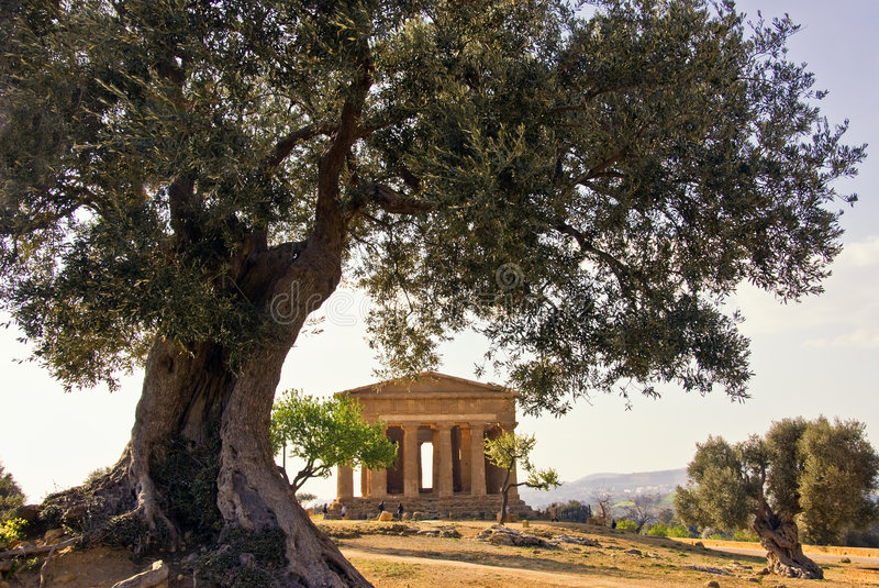 Download Temple of Concord stock image. Image of historic, sicily - 4366569