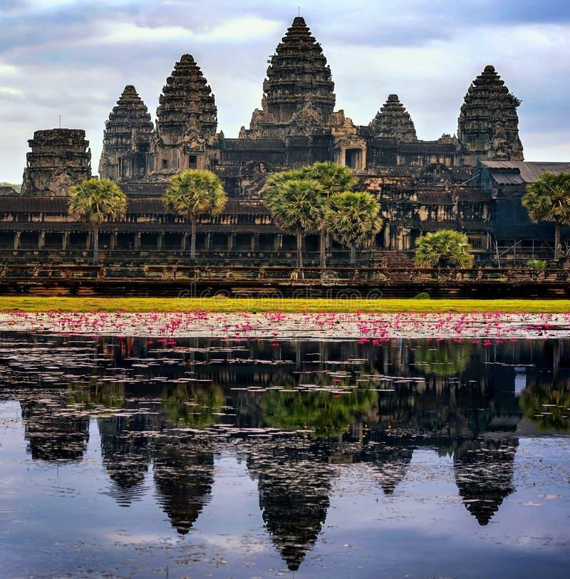 Temple d'Angkor Wat au Cambodge photos stock
