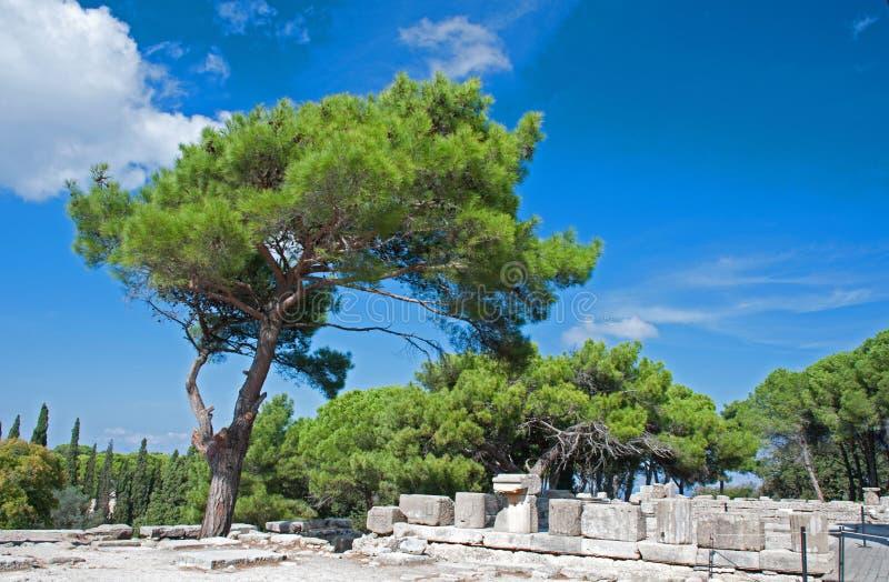 Temple d'Athéna chez Ialssos images libres de droits