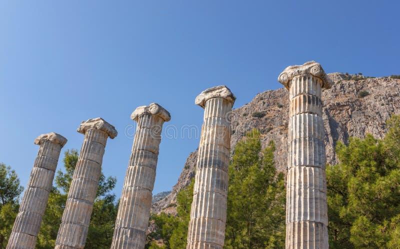 Temple d'Athéna (colonnes) photographie stock libre de droits