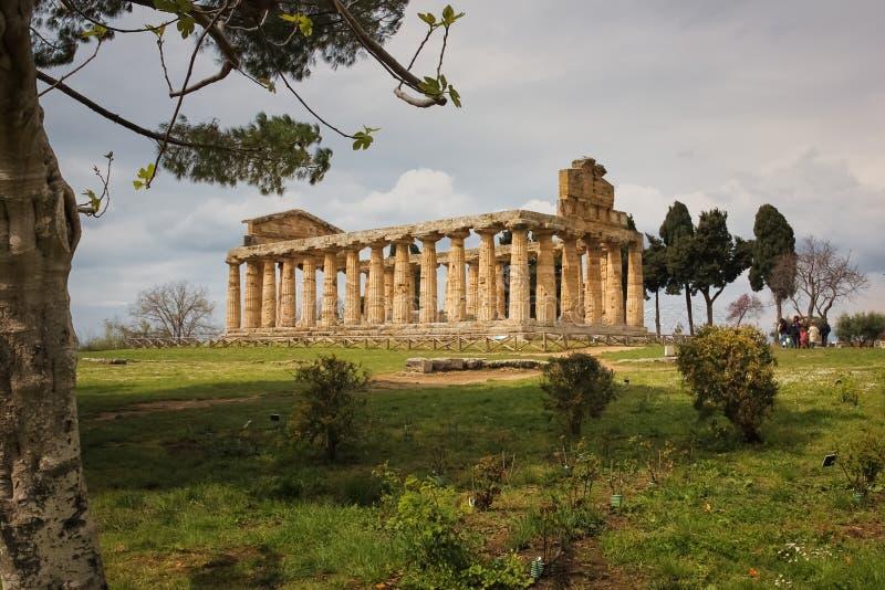 Temple d'Athéna Paestum salerno Campanie l'Italie images stock