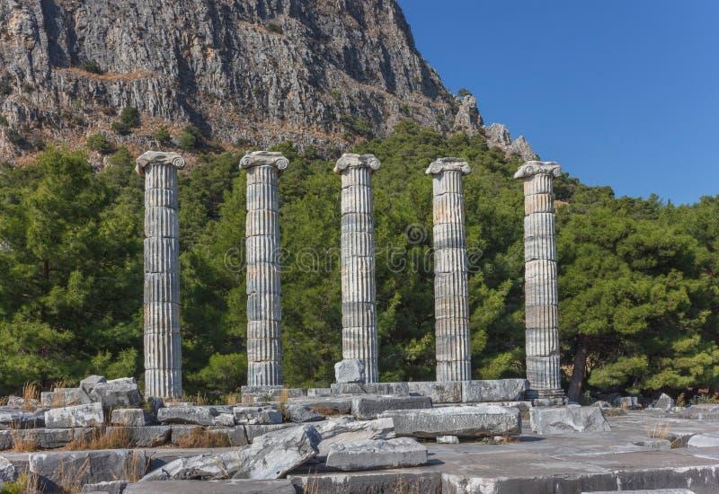 Temple d'Athena Polias 1 image libre de droits