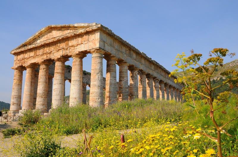 Temple dans Segesta image libre de droits