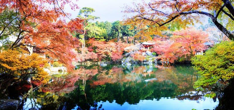 temple de Daigo-JI avec les arbres d'érable colorés en automne, Kyoto, Japa photos stock