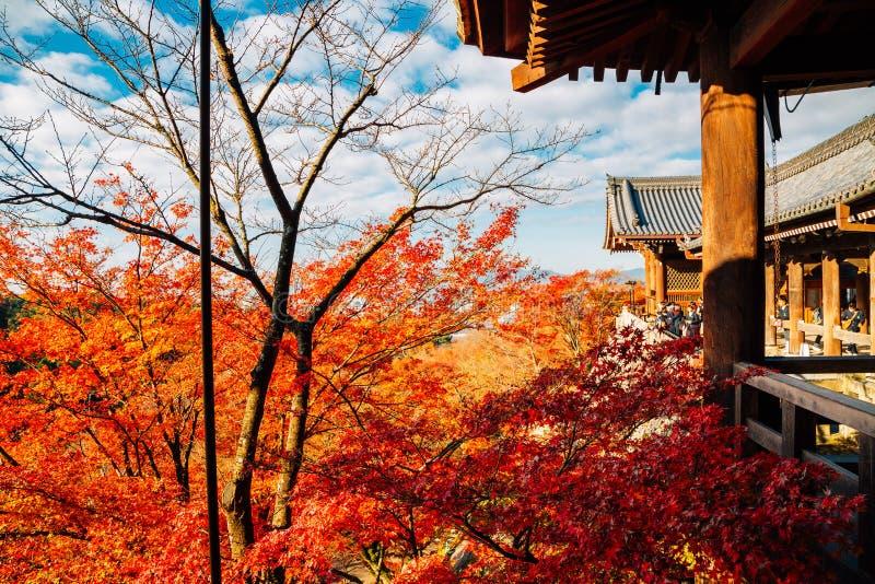 Temple de Kiyomizu-dera avec l'érable d'automne à Kyoto, Japon images libres de droits