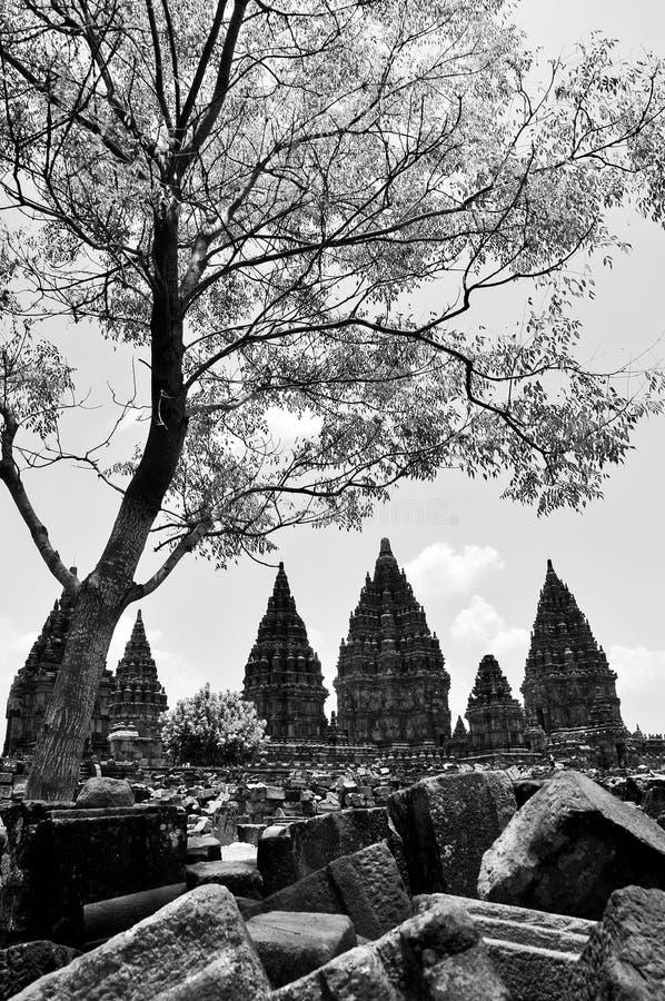Temple de Prambanan images libres de droits