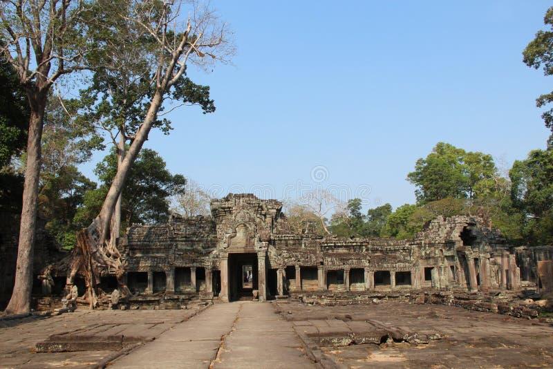 Temple de Preah Khan cambodia Province de Siem Reap Ville de Siem Reap photos libres de droits