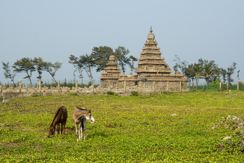 Temple de rivage de Mahabalipuram, Inde photographie stock