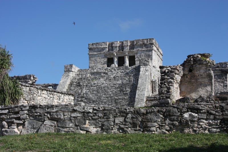 Temple de ruines maya de Tulum photo stock